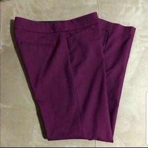 Loft Zoe purple pants